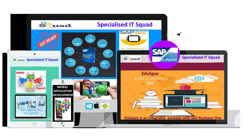 ERP-Specialised IT Squad Pvt Ltd